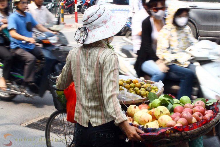 Fruit Seller, Hanoi