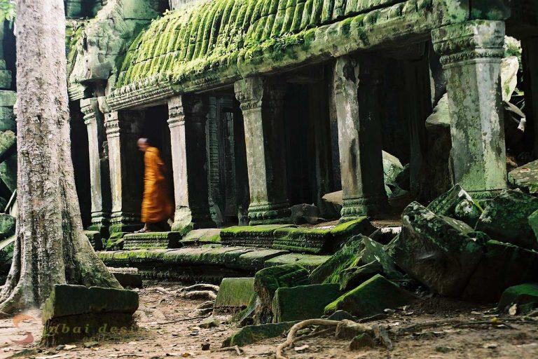 Ta Prohm Siem Reap Angkor
