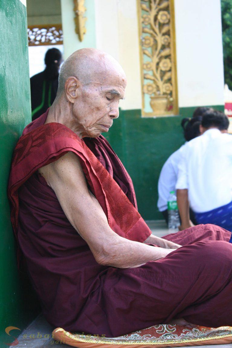 Shwedagon Monk Meditating